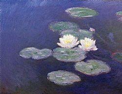 Water lilies Monet Glaude